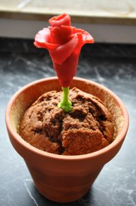 20150506-Kuchen-Blumentopf-11