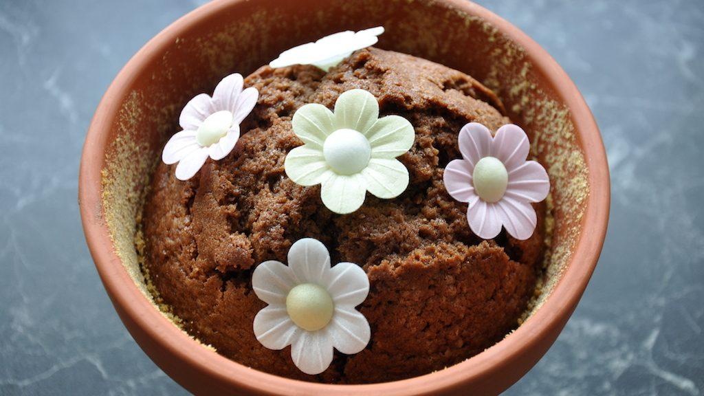 20150506-Kuchen-Blumentopf-16