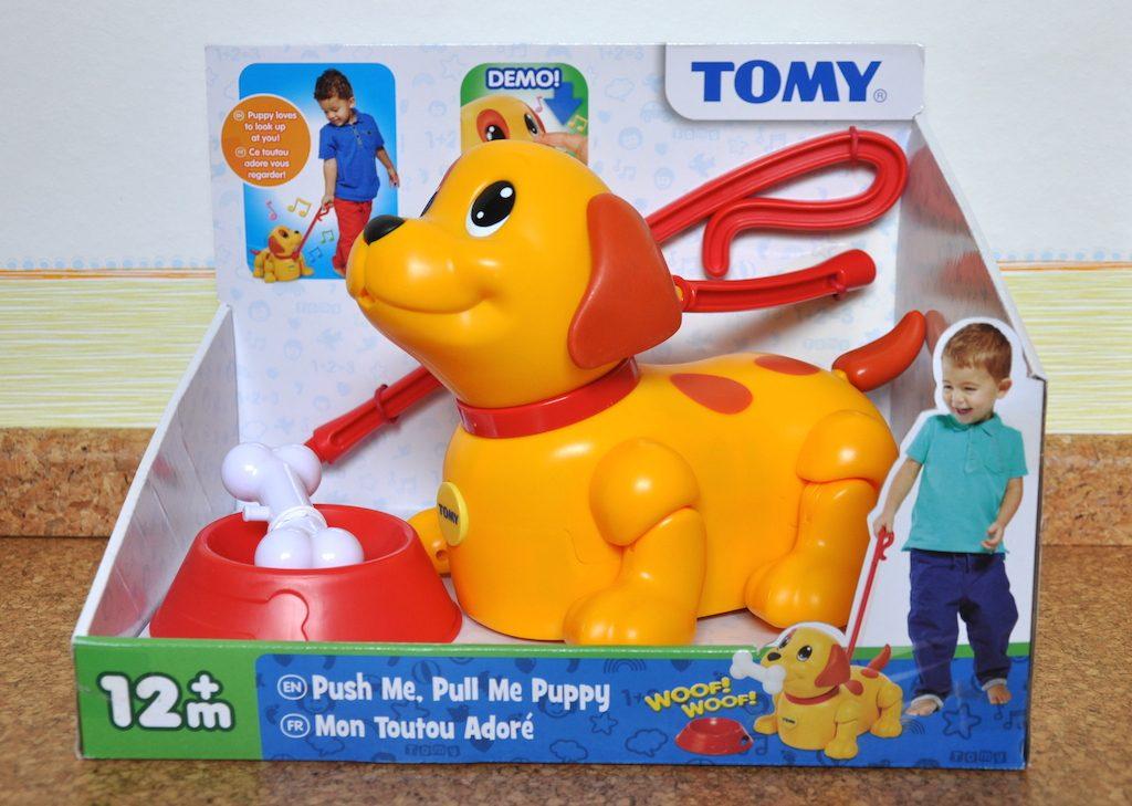 150912-Puppy-01
