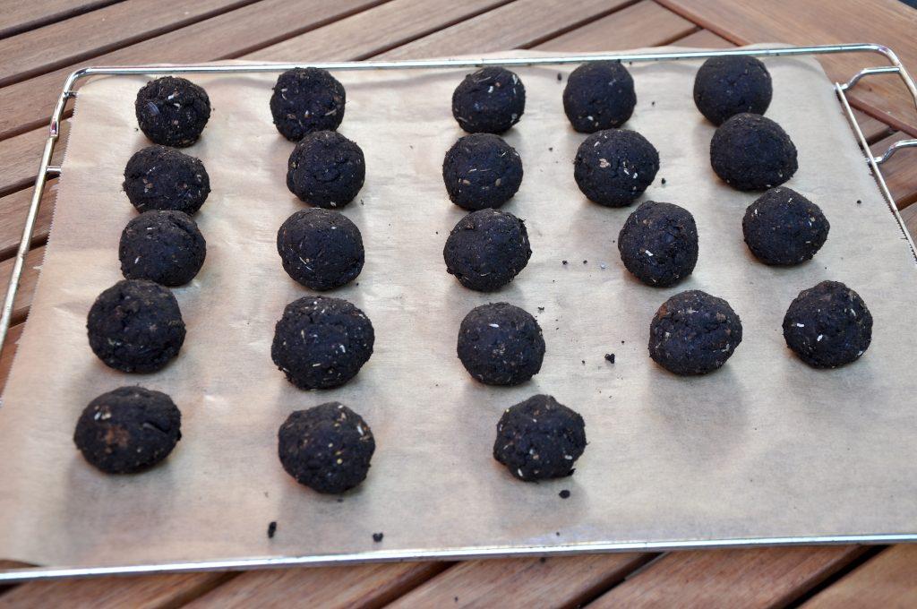 170419-Seedballs-05