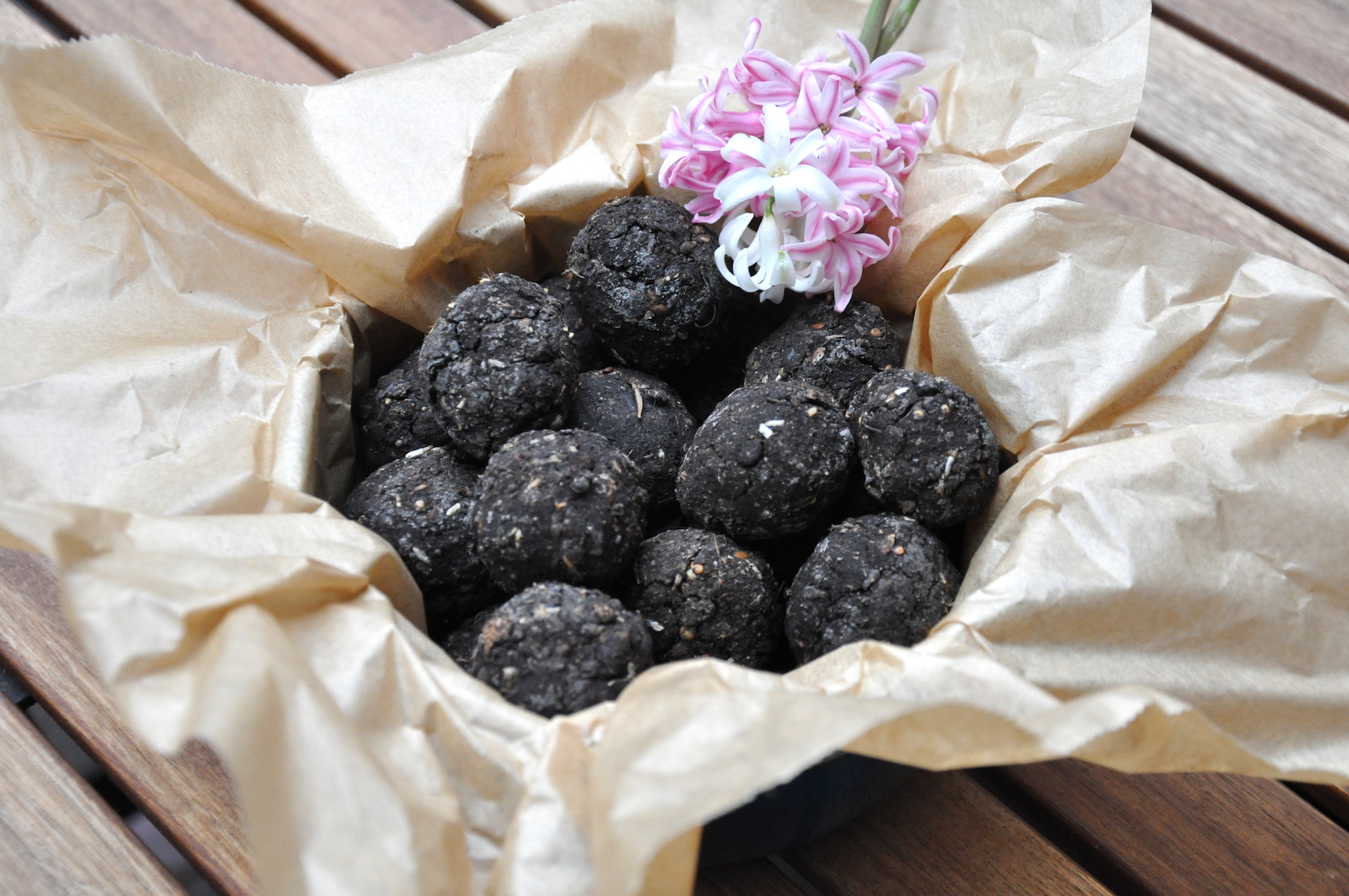 170419-Seedballs-06