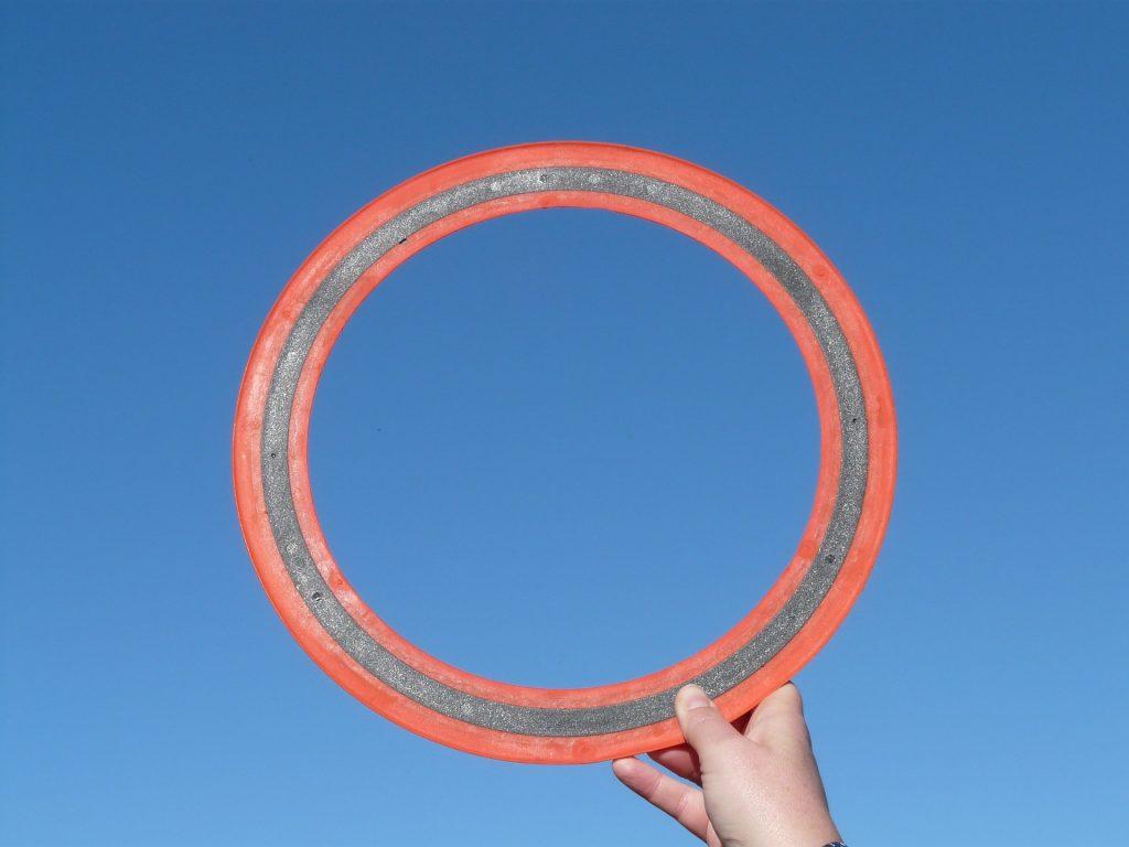 180626-Frisbee-01