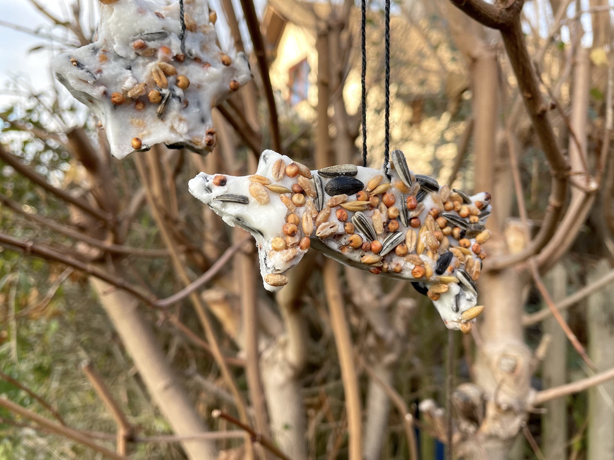201208-Vogelfutter-07